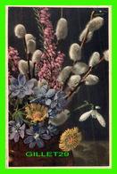 FLOWERS, FLEURS - FRUHLINGSBLUMEN - BELLE FLEURS PRINTANIÈRES - TRAVEL IN 1958 - - Fleurs