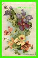 FLOWERS, FLEURS - CAPUCINES & CLÉMATITES - TRAVEL  - - Fleurs