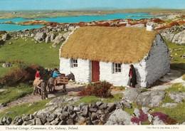 CP  - Irlande - GALWAY - Non écrite - Galway