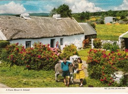 CP  - Irlande - A FARM HOUSE IN IRELAND - Non écrite - Irlande