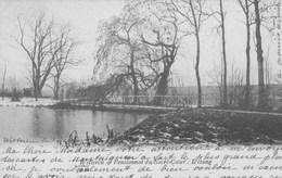 Wetteren.  Pensionnat Du Sacré-Coeur: L'Etang.   (scan) - Wachtebeke