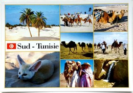 #730   Views Of The Sahara Desert, Fox, Camellars - TUNISIA, North Africa - Postcard - Animaux & Faune