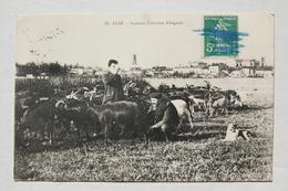 ALBI.  Soucaze, Chevrier Albigeois - Albi