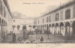 PALLANZA - PIAZZA MERCATO - Verbania