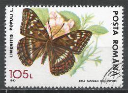 Romania 1993. Scott #3833 (U) Limenitis Populi, Butterfly * - 1948-.... Républiques