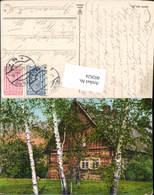 602624,Birke Birken Bäume V. Holzhaus Haus - Botanik