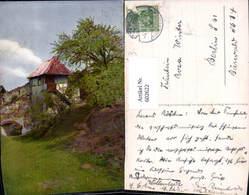 602622,Baum Vegetation Haus Ruine - Botanik