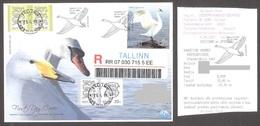 Bird Of The 2007 Year. The Swan.  Estonia Stamp FDC Mi 580 REGISTERED - Cygnes