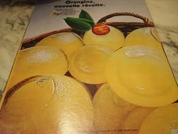 ANCIENNE PUBLICITE NOUVELLE RECOLTE ORANGINA 1969 - Affiches