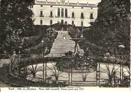(C).Napoli.Villa La Floridiana E Museo Delle Ceramiche.Vomero.F.to Grande.Nuova (c10) - Napoli