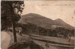 41ig 1338 CPA - ARREAU- LA ROUTE DU COL D'ASPIN - Francia