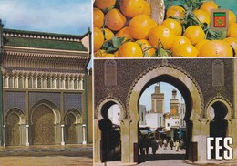 MAROC---FES---portes Du Palais Royal Et Boujeloud--multi-vues--voir  2 Scans - Fez (Fès)