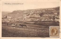 10186 - Luxembourg - Wiltz Et Niederwiltz - Cartes Postales