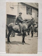 Type Basque. Cheval - France