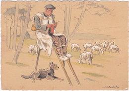 40. Gf. Croquis Régionaux. Le Vieux Berger Landais, Par J. Bonnefoy. 1301T - France