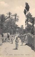 Algérie / 10417 - Gafsa - Chemin Dans L' Oasis - Algérie