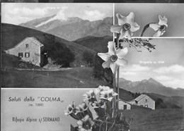 SALUTI DALLA COLMA - RIFUGIO ALPINO S/SORMANO - TIMBRO DEL RIFUGIO - VIAGGIATA 1961 FRANCOBOLLO ASPORTATO - Saluti Da.../ Gruss Aus...