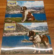 Schweiz Suisse 1964: Zu 406 Mi 791 Yv 726 Chien Du GRAND ST.BERNARD Bernhardiner-MK O BOURG ST.PIERRE 19.III.64 (VALAIS) - Chiens