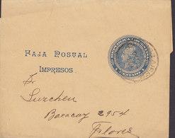 Argentina Postal Stationery Ganzsache Wrapper Streifband Bande Journal 1 Centavo BUENOS AIRES 1904 FLORES (2 Scans) - Enteros Postales