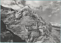 CPM:    GERICO  (palestine):   Monte Della Quarantena.     (carte Photo Véritable)   (E1654) - Palestine