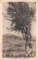 18-SANCERRE-N°1100-D/0003 - Sancerre