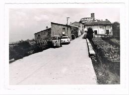 Pulica Massa Carrara Anni 50 - Massa