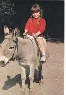âne, Donkey, Esel, Culo, Unused - Anes