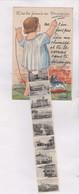 CPA FILLE , N A TU JAMAIS VU PERPIGNAN  (avec Petites Photos En Solevant Chemise) En 1929! - A Systèmes