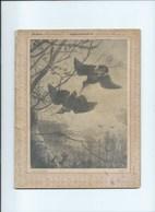 Bécasse Et Bécassine Cahier Complet Couverture Protège-cahier +/- 1900 3 Scans - Protège-cahiers