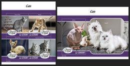 SIERRA LEONE 2019 - Cats. M/S + S/S Official Issue. - Katten