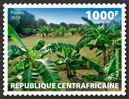 Central Africa. 2019 Vegetation. (local03a)  LOCAL ISSUE - Alimentation