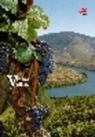 Portugal & PGSB Old Vineyards 2016 (4553) - Agriculture