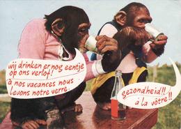 Monkey, Singe, Affe, Used - Singes