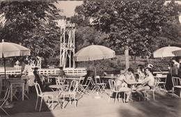 CAEN : La Terrasse De L'école De Natation - Caen