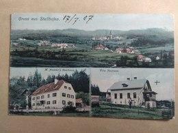Gruss Aus Stallhofen , M. Hiebler's Gasthaus , Villa Neuhaus 1904 - Voitsberg