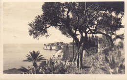 Croatia Vorläufer Yugoslavia PPC Dubrovnik - Ragusa Foto Berner DUBROVNIK 1937 LAUSANNE Schweiz Echte Real Photo - Yougoslavie