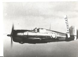 PHOTO AVION CURTISS H75 A  N°234 SERGENT MUSELLI DU GC 1/5 RABAT OCT 1940  ARCHIVE CUICH  12X8CM - 1946-....: Era Moderna