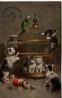 12688  - Illustrateur -   LA CAGE AUX CHATS   De   C. RESCHIRT   -  Circulée En 1915 - Künstlerkarten
