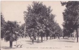 CPA - TOULOUSE - 108. Grande Allée, Allées Des Palmiers - Toulouse