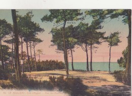 CPA - 76. Le MOULLEAU Parc Des Abatilles - France