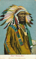 """Chef Indien Chief  """" Yellow Hair """"  Colorisée Parure De Plumes - Indiens De L'Amerique Du Nord"""