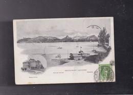 SUISSE , Genève, Musée ARIANA Et Restaurant Lacustre - GE Genève