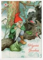 Postal Stationery RED CROSS  Finland SPR 2005 - CHRISTMAS POSTCARD - Artist: INGE LÖÖK - GNOME & BIRDS - Postage Paid - Finland