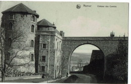 Namur  Chateau  Des Comtes - Namur