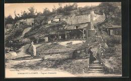 CPA Apremont-la-Foret, Cagnas Allemandes - Francia