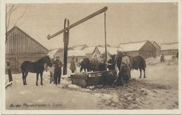61-270 Belarus Wohlfahrts Postkarte Ostpreussenhilfe Pferdetränke Kolno Vlg Gross - Belarus