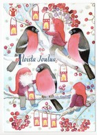 Postal Stationery SAVE THE CHILDREN  Finland - CHRISTMAS POSTCARD - GNOMES & BIRDS - BULLFINCHES - Postage Paid - Finland