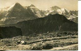 007230  Schynige Platte - Blick Auf Die Jungfraugruppe - BE Bern