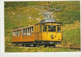 C.P. - PHOTO - LE PETIT TRAIN DE LA RHUNE - LAVIELLE - - Eisenbahnen
