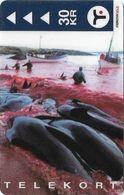 Faroe - Faroese Telecom (Magnetic) - GSM Pilot Whales #2 - 30Kr. - 17.500ex, Used - Faroe Islands